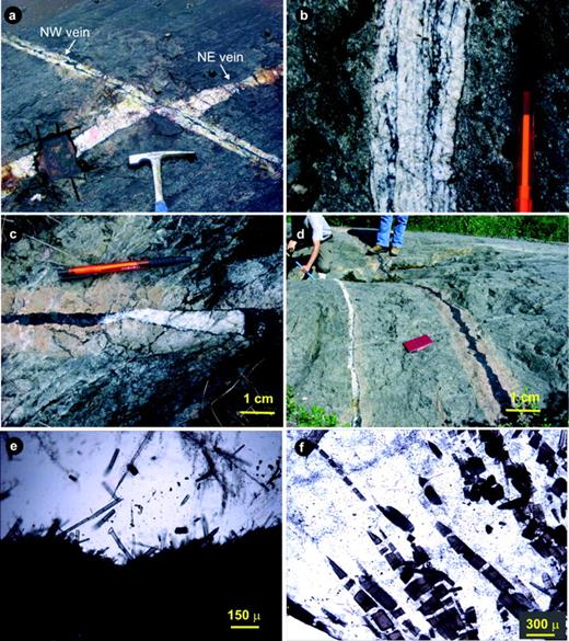 a. A NE-trending vein displaced by a NW-trending vein at the south zone of the Buffalo gold deposit. b. Bands of tourmaline alternating with quartz in a NW vein. c. Quartz and tourmaline occupying different segments alongstrike of an NW vein. d. Two NW-trending quartz-tourmaline veins showing a pink (albite-tourmaline-ankerite) alteration halo surrounding the tourmaline-rich portion of the veins and its absence on the tourmaline-poor side. e. Rosettes of tourmaline crystals growing from the wall of a fracture that cuts massive tourmaline; tourmaline and quartz co-precipitated in the fracture. f. Tourmaline crystals dispersed in quartz showing mechanical fractures filled by quartz.