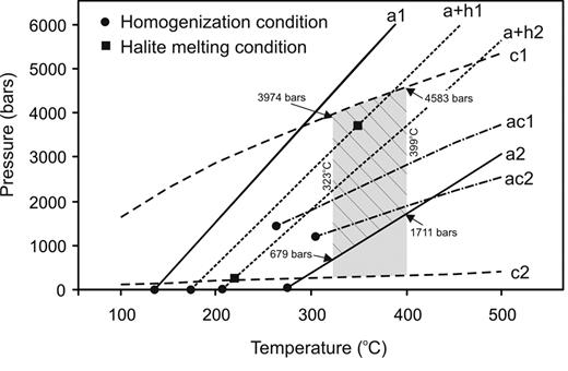 Isochores showing the ranges of possible fluid pressures for each type of fluid inclusions (a = aqueous, c = carbonic, ac = aqueous-carbonic, a+h = halite-bearing aqueous). The shaded area represents the pressure range constrained by the isochores of carbonic fluid inclusions and the trapping temperatures from the quartz-tourmaline oxygen isotope geothermometer (323° to 399°C). The hatched area represents the pressure range above the lower end of the isochores of aqueous inclusions (a2), which is interpreted to reflect the possible range of fluid pressure during the vein formation and mineralization. Note the homogenization temperatures of the aqueous, aqueous + halite, and aqueous-carbonic inclusions are lower than the trapping temperatures, whereas the halite-melting temperatures might be close to the trapping temperatures.