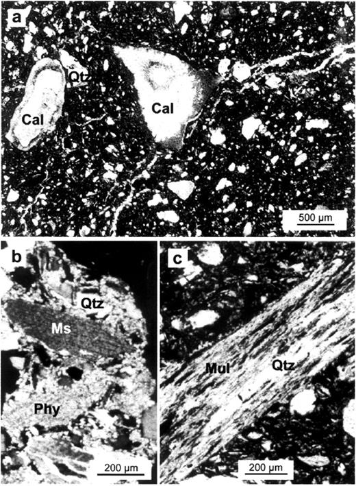 Optical microscopy micrographs of: a) calcite (Cal) grain fired at 800°C showing cracks which penetrates the brick matrix (plane light). Reaction rims are observed at the carbonate-phyllosilicate (matrix) and carbonate-quart (Qtz) interfaces; and b) muscovite (Ms) crystal before (cross polars) and c) after heating up to 800°C (plane light). Mullite (Mul) observed in the latter.