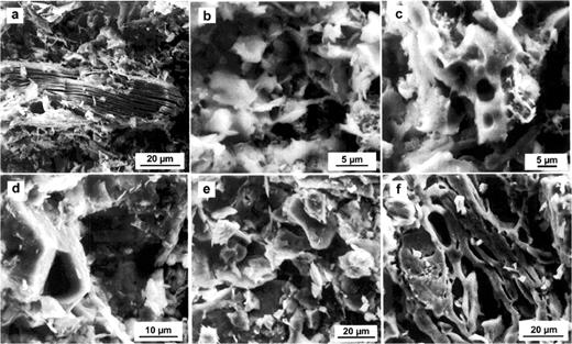 SEM secondary electron photomicrographs of Viznar samples fired at 800°C (a), 1000°C (b), and 1100°C (c); and Guadix samples fired at 700°C (d), 900°C (e) and 1000°C (f).