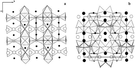 The crystal structures (projection on ab-plane) of nenadkevichite (a) and lemmleinite (b). The black circles are: K (large) and Na (small ones). The open circles show the positions of water molecules.