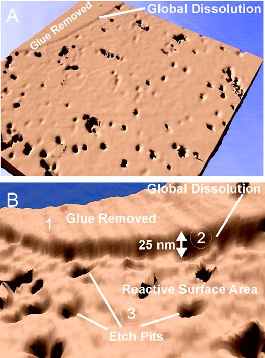 a) VSI scan of a dolomite cleavage face showing both individual etch pits and the overall retreat of the mineral surface (pH 3 and 25°C after 1-hour run duration; Lüttge et al., 2003); b) Enlargement of rectangular area in a: (1) reference glue removed; (2) global dissolution; (3) reactive surface area with etch pits.