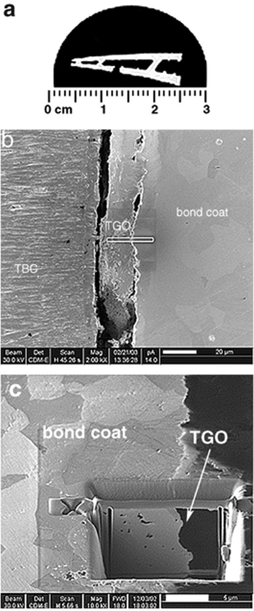 Coatings on a turbine blade from a jet engine. a) Optical micrograph of a cross section through a part of a turbine blade embedded in conducting resin. b) SE image of the bond coat and the thermal barrier coat TBC with the thermally grown oxide TGO layer in between. The bar in the centre of the image shows the FIB deposited Pt protection layer. c) SE image of the FIB prepared TEM foil after cutting. Note the orientation contrast of the grains of the bond coat and the dark contrast of the TGO layer.