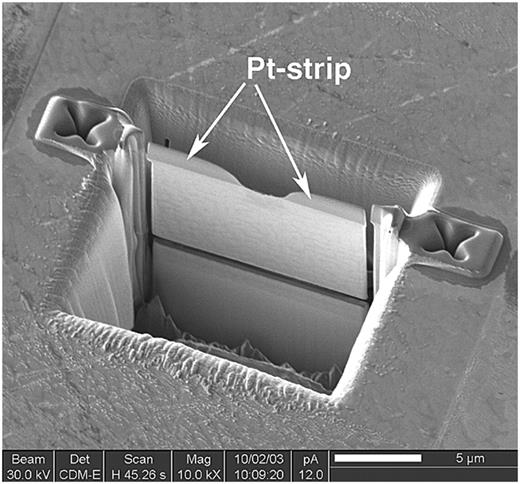 SE image of the foil ready for lift-out. The TEM foil is polished to a final thickness of about 120 nm. The foil is completely cut free and can be removed from its excavation site under an optical microscope by means of a manipulator and placed onto a TEM grid coated with a holey carbon support film.
