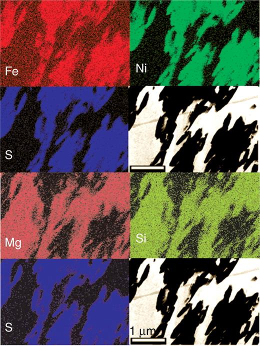 Inclusion in an opx megacrystal. Investigation of the foil by means of analytical electron microscopy (AEM). Elemental maps using Fe Kα, Ni Kα, S Kα, Mg Kα and Si Kα X-ray intensities for imaging. Due to the homogeneous foil thickness concentration of the selected elements corresponds to colour intensity. The two TEM bright field images show antigorite with bright contrast and sulphide with dark contrast. Scale bar in the bright field images is 1000 nm.