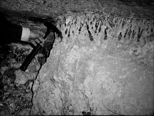 Photograph of the upper Himalaya dike exposed in the Himalaya Mine. Large wedge-shaped schorl crystals, some over 10 cm in length, can be seen growing out in a comb structure from the pegmatite hanging wall-country rock contact. The dike has a width of ~ 1 m.
