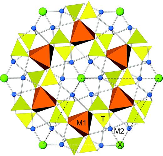 The crystal structure of apatite, as seen along c. The unit cell is outlined. The M1-centred polyhedra are represented as six-fold coordinated metaprisms (the bonded O3 ligands are not included in this polyhedral representation). Two out of the seven bonds to M2 overlap in this projection, therefore only five are visible in the figure.