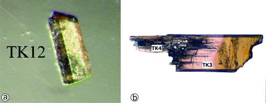 Coloured tourmalines from the Königsalm pegmatite (Moldanubian nappes, Lower Austria). (a) Brownish fluor-schorl (sample TK12) with ~300 μm in length, (b) Pink foitite (TK3) and greenish-gray magnesiofoitite (TK42).