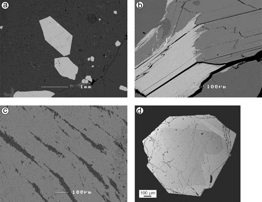 """Back-scattered electron images of samples from the pegmatite from Königsalm (Moldanubian nappes, Lower Austria). (a) Spessartine-almandine crystals (light gray) in albite (dark gray), samples from domains of coarse-grained biotite intergrown with feldspar (Sample EK2): (b) """"Biotite"""" (annite), intergrown with muscovite, (c) Perthite (microcline host with albite exsolution lamellae), (d) zoned monazite-(Ce) crystal."""