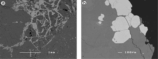 Back-scattered electron images of samples from the pegmatite from Maigen (Moldanubian nappes, Lower Austria). (a) Fragmented pale-pink elbaite (dark grey) intergrown with albite and microcline (light grey), (b) Almandine-spessartine crystals (light grey) in plagioclase (dark grey) (sample EM1).
