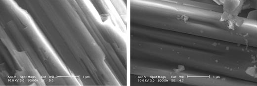 Scanning electron micrographs of pyroxene surface before and after reaction with water; a, fresh; b after reaction with water.