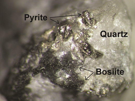 Black bosiite aggregates (type material), consisting of many tiny crystals, in quartz with pyrite from the Darasun gold deposit (field of view ~3 × 4 mm2). (online version in colour)