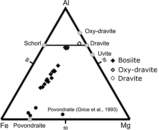 Compositional variations of tourmalines from the bosiite type locality, Darasun gold deposit. Compositions of bosiite (first tourmaline generation) and of the second (oxy-dravite) and the third (dravite) generations are projected on the Fe–Al–Mg plane (modified from Baksheev et al., 2011).