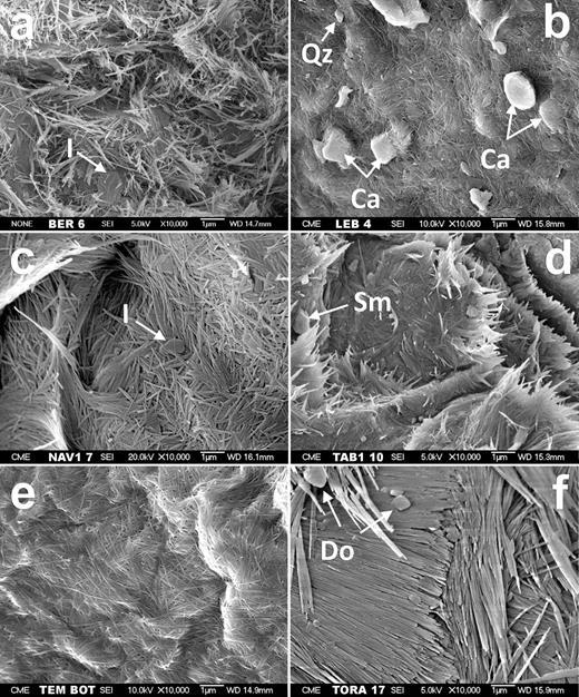 SEM micrograph showing general views. a) Bercimuel; b) Lebrija; c) Nava del Rey; d) Tabladillo; e) Tembleque and f) Torrejón el Rubio. I, illite; Qz; quartz; Ca, calcite; Sm, smectite; Do, dolomite.