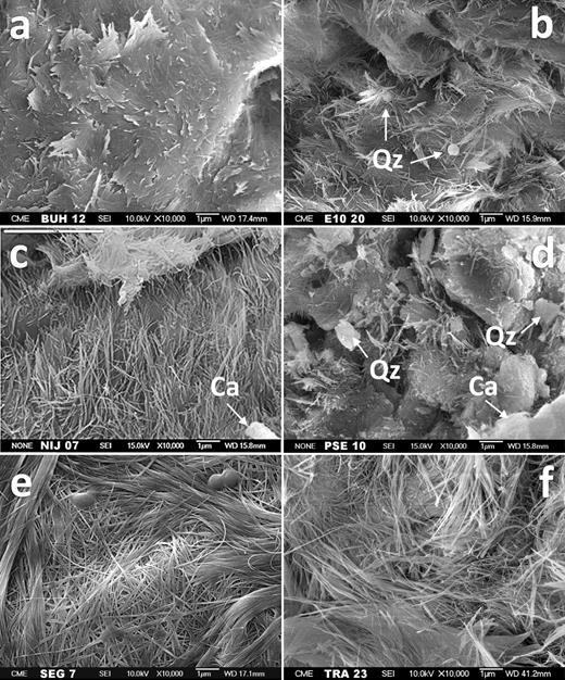 SEM micrograph showing general views. a) Buho, b) Esquivias, c) Nijar, d) Pedrajas de San Esteban, e) Segovia, and f) Trancos. Qz, quartz; Ca, calcite.
