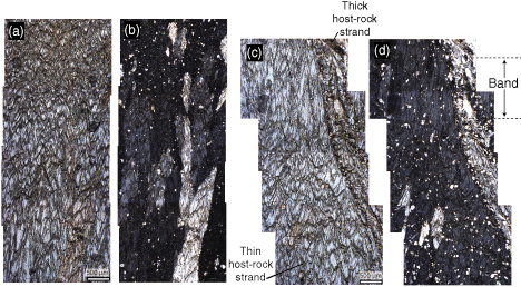 Dolomite overgrowths suggest a primary origin of cone-in-coneJ. N ...