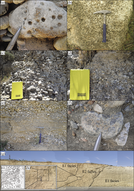 (Colour online) Photographs of key features of conglomerates within the Athalassa (Gürpınar) Formation in the area studied: (a) bored clast of metacarbonate; (b) heavily bored clast of grainstone; (c) well-rounded, clast-supported conglomerate (B2 facies); (d) normal grading within fluvial conglomerate beds (B2 facies); (e) interbedded conglomerate and calcarenite; (f) reworked clasts of megabreccia from the Pleistocene terraces (Palamakumbura & Robertson, 2016); (g) overview of a deposit comprising interbedded E1 and E2 facies; and (h, i) photograph and schematic sketch of the E2 facies breccia. Pencil length for scale is c. 15 cm, hammer head length is c. 30 cm and notebook length is c. 22 cm.