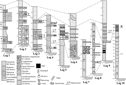 Sedimentary logs of the Athalassa (Gürpınar) Formation that were measured during this study (see Fig. 2 for locations). Facies-based correlations are shown by dashed lines.