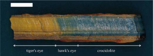 Hand specimen photograph illustrating the transition of tiger's-eye through hawk's-eye into unaltered crocidolite asbestos on a centimeter scale. Scale bar is 2 cm long.