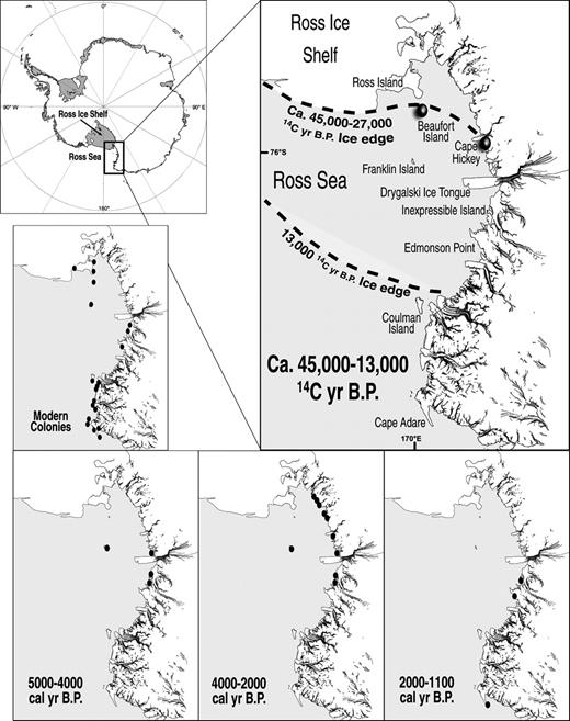45000 Yr Record Of Adlie Penguins And Climate Change In The Ross