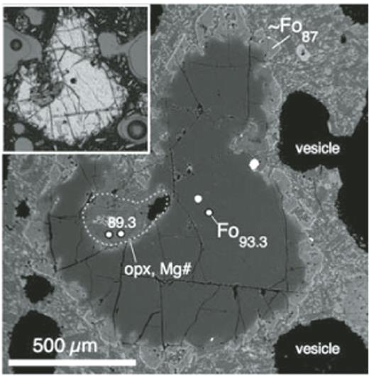 Backscattered electron and transmitted light (inset) images of a Fo93 olivine in Shasta high-magnesian andesite (HMA). Note inclusion of disequilibrium orthopyroxene, embayed rim of original Fo93 grain, and euhedral/skeletal overgrowth of Fo87 olivine.