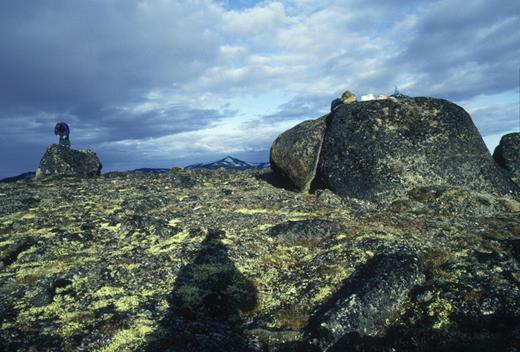 Figure 1. A fresh, young, angular erratic (left) perched on rounded, deeply weathered gneissic bedrock illustrates the complexity of cosmogenic dating in terrain where glacial ice has been frozen to the bed. This is the area above Pangnirtung Fiord on Baffin Island. The erratic has similar 10Be and 26Al model ages (Bierman et al., 2001), suggesting that melting ice exposed it ca. 10 ka. The weathered bedrock has a complex exposure history >700 k.y (Bierman et al., 1999, 2001).