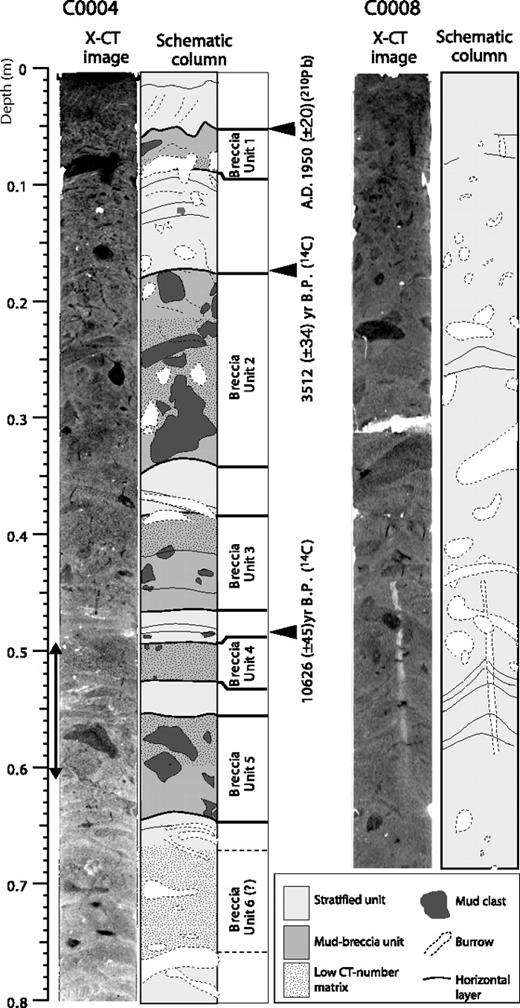 X-ray computed tomography (X-CT) and schematic images of cores from hanging wall (sample from Site C0004) and footwall (sample from Site C0008) of megasplay fault. Interval from seafloor to 80 cm depth is shown. Schematic column is interpreted from X-CT images of various contrasts. Many burrows are recognized in X-CT image. Black double arrow at core sample C0004 shows location of Figure 2B.