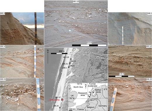 Location of study site, and images of seven foredune exposures (HK-I–HK-VII) showing various storm surge–related sedimentary structures. Scale bar visible in five exposures has 5cm sections. Seven exposures were situated along 1-km-long stretch of scarped foredune in western Netherlands, as shown on aerial photograph. Ground-penetrating radar (GPR) profile associated with HK-VI is shown as red line. S—Scheveningen, P—Petten. HK-II: 20-cm-thick unit of shells and shell hash without deformation structures. HK-V: Air-escape structure (to right of scale bar) in unit that consists of intercalated sand and shell hash. HK-IV: Pocket of shells in sand. Some shells are articulated Cerastoderma edule. They are empty, indicating that they died shortly after being displaced by storm surge. HK-VII: Convolute beds highlighted by distribution of whole shells, and underlying slump structure. HK-I: Multiple subparallel horizons of single shells that are mostly oriented convex-side up. HK-VI: Flame structures in shell hash underlying shell-rich unit. HK-III: Convolute beds highlighted by distribution and orientation of shell hash, covered by shell layer.