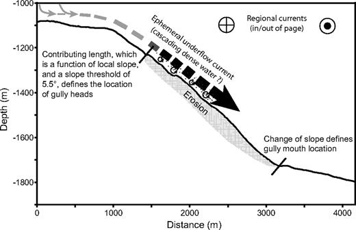 Topographic Signature Of A Hydrodynamic Origin For Submarine Gullies