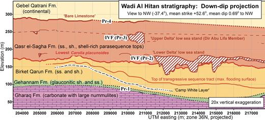 True-scale computed cross section of Wadi Al-Hitan stratigraphy projected from three-dimensional GPS mapping of bed traces (view down-dip, vertical exaggeration 20x). Elevation traces are 3-point running averages. Priabonian disconformities Pr-1 through Pr-4 correspond to global low sea stands. Incised valley fill (IVF) deposits are hatched to represent cross-bedding. Pr-2 is documented in Peters et al. (2009). Abbreviations: Fm.—Formation; sh.—shale; ss.—sandstone.