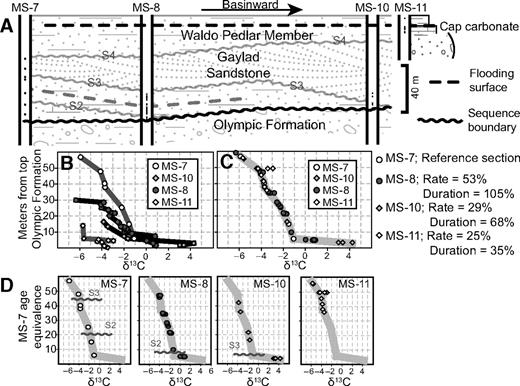 A: Sequence-stratigraphic relations among measured sections from the northeastern Amadeus Basin modified from Kennedy and Christie-Blick (2011); black dots are isotope samples from interfingered laminated cap carbonate facies. B: δ13C values relative to distance from top of Olympic Formation. C: δ13C values, accumulation rates, and net durations relative to reference section MS-7. D: temporal distributions of sequence boundaries if similar δ13C values are coeval (Fig. 1C).