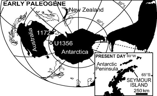 Paleogeographic and present-day maps showing location of Seymour Island, Antarctic Peninsula, and other localities discussed in text. Paleogeographic map is redrawn after Bijl et al. (2009). 1172 and U1356 are ocean drilling sites discussed in the text.