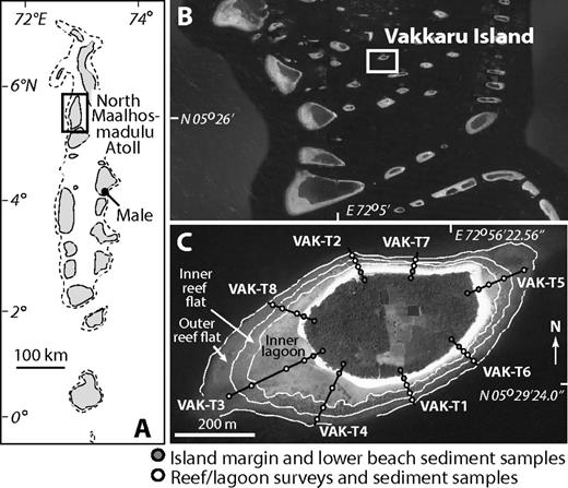 A: Location of Northern Maalhosmadulu Atoll (Maldives). B: Location of Vakkaru island (Maldives). C: Vakkaru island, showing geoecological zones, study transects, and reef and island survey and sediment sampling stations.