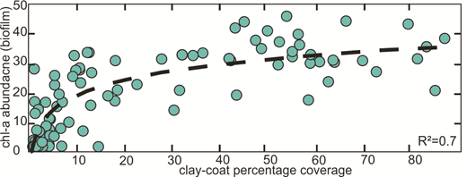 Cross plot of percentage clay-coat coverage and biofilm biomarker (chl-a—chlorophyll-a) indicating a positive correlation between increased sediment biofilm abundance and clay-coat coverage.