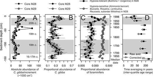 A–C: Stratigraphic trends in absolute and proportional abundance of Corbula gibba and in absolute abundance of foraminifers differing in sensitivities to hypoxia. D: Downcore changes in time averaging (interquartile age range) observed in C. gibba death assemblages in 4- and 5-cm-thick increments. Black points show raw values and gray points show values corrected for calibration errors (with 95% confidence intervals).