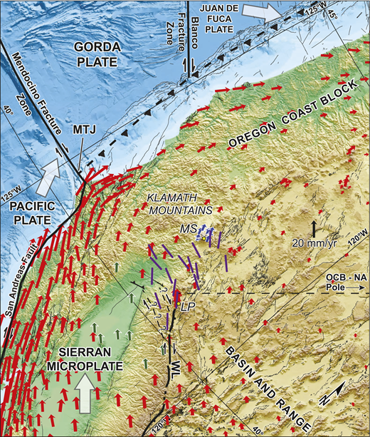 Oblique Mercator map of the Pacific Northwest using the Sierran microplate–North America (S-NA) Euler pole of Argus and Gordon (2001) as the basis for projection. Large white arrows show motions of the S, Pacific plate, and Juan de Fuca plate with respect to NA. Select global positioning system data (red, green, and blue arrows) illustrating the velocity field relative to NA were obtained from the U.S. Geological Survey (http://earthquake.usgs.gov/monitoring/gps/NCalifornia/). Green and blue arrows indicate specific stations selected to illustrate S-NA and Oregon coast block (OCB)-NA motion, respectively, in Figure DR5 (see footnote 1). Purple bars indicate orientations of planes of macroscopic dextral shear derived from inversions of earthquake focal mechanisms for strain (see the Data Repository for inversion results). LP—Lassen Peak; MS—Mount Shasta; MTJ—Mendocino triple junction; WL—Walker Lane.