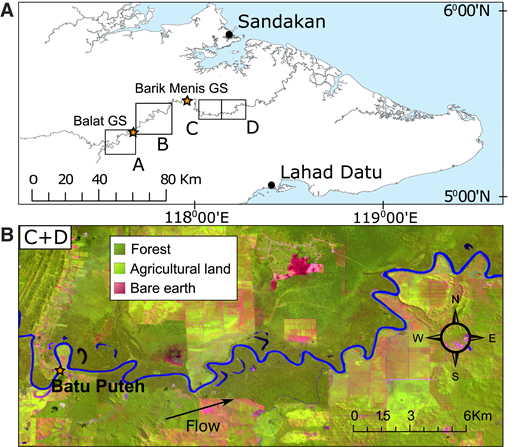 A: Locations of study reaches (A–D) and Barik Menis and Balat gauging stations (GS), Kinabatangan River, Malaysia. B: False-color composite of Landsat satellite bands 3, 4, and 5 taken in October 2009, showing extent of reach C and D and location of Batu Puteh village (orange star), with legend defining associated land-cover types.