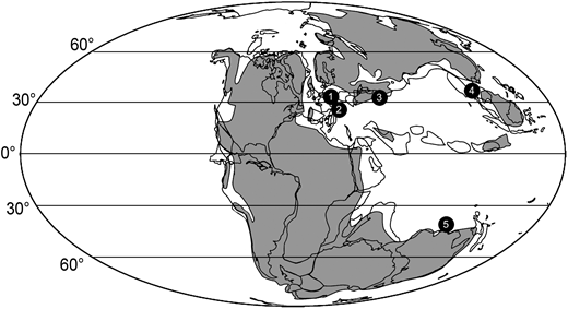 Paleogeographic reconstruction of the Middle Triassic world showing the position of the Paleozoic echinoderm hangover localities. 1—Muschelkalk Basin (Germany and France). 2—Western paleo-Tethys (Hungary, Italy, Austria). 3—Central paleo-Tethys (Iran). 4—Eastern Paleo-Tethys (Sichuan, China). 5—Southeastern Tethys (Australia). Modified from Thuy (2013).