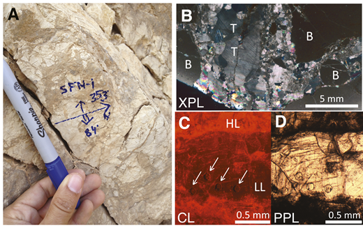 Example of fault-related calcite from Shelomo fault zone, Israel. A: Subvertical, approximately north-striking fault-wall breccia. B: Breccia fragments (B) and coarse-grained calcite cement, showing twins (T) under cross-polarized light (XPL). C,D: Cathodoluminescence (CL, panel C) and plane-polarized light (PPL) (panel D) images of laser ablation spot analyses (arrows) within calcite cement. Note high luminescence (HL) of host rock relative to weakly luminescent dated calcite (LL). Additional microstructure observations are given in Figure DR1 (see footnote 1).