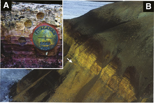 "A: The xenoconformity at the contact between the glaciogenic Elatina Formation below and the Nuccaleena cap dolostone in Brachina Gorge (Flinders Ranges, South Australia) was chosen as the Global Stratotype Section and Point (i.e., GSSP or ""golden spike"") for the ca. 635 Ma base of the Ediacaran Period (Knoll et al., 2006). B: This same surface can be identified with confidence globally, including in Svalbard, where it marks the contact (white arrow) between the Cryogenian Wilsonbreen Formation and the Ediacaran Dracoisen cap dolostone."