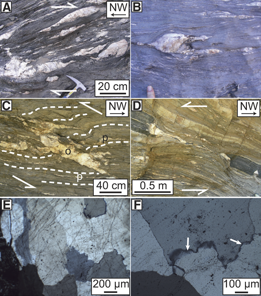Photographs of quartz veins in Kuiseb Schist (Damara belt, Namibia). White arrows in panels A, C, and D show inferred sense of shear. A: Typical outcrop appearance of folded and boudinaged, foliation-parallel veins. B: Isoclinal fold in vein parallel to, and crosscut by, greenschist facies foliation. C: Mutually crosscutting foliation-parallel (p) and foliation-oblique (o) veins; foliation traces in white dashed lines. D: Boudinaged metamafic lens and quartz vein. E: Photomicrograph showing serrated vein quartz grain boundaries and inclusion trails across these boundaries (sample KV18). F: Photomicrograph of vein quartz grain boundary with recrystallized grains (white arrows) (sample GBLC). Both photomicrographs were taken in cross-polarized light.
