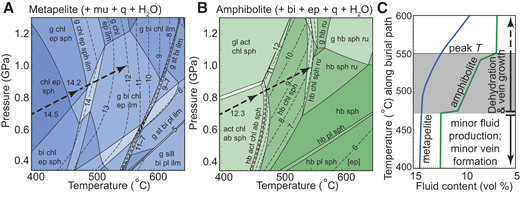 A,B: Pseudosections for metapelite (A) and amphibolite (B) compositions, contoured for volume percent fluid held in mineral assemblage (thin dashed lines). C: Fluid production along subduction burial path, shown as thick dashed arrow in A and B, with very limited fluid release below temperatures of 470 °C, followed by punctuated and steady fluid release to peak temperatures (T). Mineral abbreviations: ab—albite; act—actinolite; bi—biotite; chl—chlorite; ep—epidote; g—garnet; gl—glaucophane; hb—hornblende; ilm—ilmenite; mu—muscovite; pl—plagioclase; q—quartz; ru—rutile; sill—sillimanite; sph—titanite; st—staurolite.