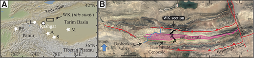 A: Regional map showing the study area (WK section), previous work (white stars), and the location of Kashgar Town (northwestern China), located just south of the Kashgar section (Heermance et al., 2007). A—Aertashi section (Zheng et al., 2015); M—Mazatagh section (Sun et al., 2009, 2011); PE—PE section (Carrapa et al., 2015); S—Sanju section (Sun and Liu, 2006); UL—Ulugqat section (Wang et al., 2014). B: Google Earth™ image of study area (outlined in A) showing sample locations (black dots), major faults (red-lines with barbs on hanging wall), base of Miocene strata (green line), Dashenkou Valley (blue line), and the extent of the described eolian strata.