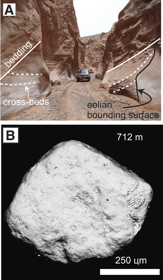 A: Photo of sandstone outcrop 39.9115, showing meter-scale cross-bedding (dashed white lines), color, and contacts (solid lines) typical of eolian strata. B: Scanning electron microscopy photo of a typical grain from eolian strata, showing pitted surface with irregular depressions and upturned plates.