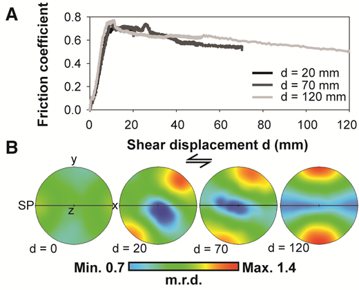 A: Evolution of friction coefficient as a function of shear displacement (d) in the travertine samples used in this study. B: Calcite (006) pole figures measured via neutron diffraction on cohesive wafers of gouge extracted from blocks sheared to different amount of shear displacement (d, in mm). SP—shear plane. Color bar is in multiple of random distribution (m.r.d.). Max.—maximum; Min.—minimum.