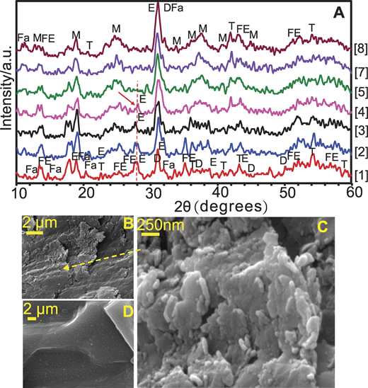 X-ray diffraction (XRD) analyses of field samples [1]–[5] and [7]–[8], and scanning electron microscopy (SEM) images showing thermal decomposition evidence on sliding surface and at 2.3 mm depth. A: Annotated XRD spectra of selected subsamples from sample site A. D—dolomite; T—talc; Fa—faujasite; FE—feldspar; E—enstatite; M—magnesium silicate. B: Nano-scratches on submicron plates of aluminosilicate formed during dynamic recrystallization on sliding surface. C: Close view of aluminosilicate platelets of Figure 3B showing platelet growth by addition of agglomerations of aluminosilicate spherules to platelet edges, interpreted here as possible evidence of dynamic recrystallization. D: SEM image of dolomite crystal ∼2.3 mm below sliding surface.