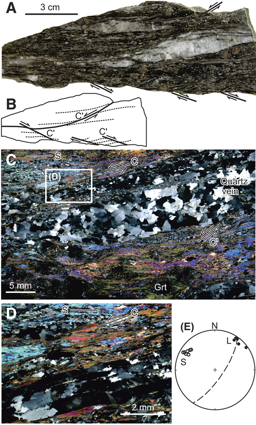 Mylonites from Northwest Fujian fault, South China. A,B: Sample and sketch. See Figure DR4 in Data Repository (see footnote 1) for a field photo and enlargement of A. C,D: Photomicrographs. Note that a dextral shear band (C′) overprints a sinistral one in A and B, and sinistral shear bands post-date garnet (Grt) growth in C. Also note the S-C structures in C and D. All surfaces are subhorizontal. E: Projections of lineations (L) and poles to foliations (S).