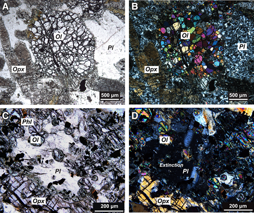 Photomicrographs of the shock metamorphic features of the olivine-bearing mafic and ultramafic inclusions in the Sublayer and the Offset Dikes of Sudbury Igneous Complex (Canada). A: Shocked mosaic olivine preserves original euhedral shape, but now comprises small subgrains (plane-polarized light) (sample 373555). B: Same field of view as in A showing olivine subgrains with distinct interference colors (cross-polarized light). C: Shocked plagioclase shows pervasive, multi-oriented fractures (plane-polarized light) (sample 373582). D: Same field of view as in C showing partial isotropization (cross-polarized light). Ol—olivine; Opx—orthopyroxene; Pl—plagioclase; Phl—phlogopite.