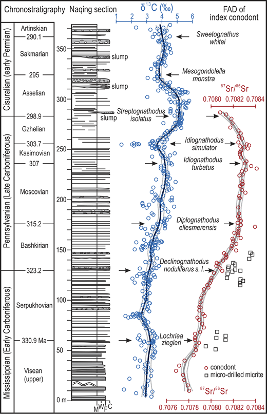 Conodont and carbonate 87Sr/86Sr (this study) and carbonate δ13C (Buggisch et al., 2011) from the Naqing section, south China, with updated conodont biostratigraphy. Trend lines are locally weighted scatterplot smoothing (LOESS, 0.1 smoothing) regressions with 2.5% and 97.5% bootstrapped errors. M—lime mudstone; W—wackestone; F—fine-grained packstone; C—coarse-grained packstone; FAD—first appearance datum for conodont taxa.