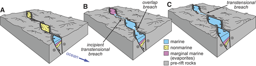 """Conceptual block model illustrating progressive seaway encroachment along en-echelon, pull-apart basins. A: Marine inundation will occur first in the basin most proximal to the continental margin (bottom), while topographic barriers generated by isostatic and fault uplift inhibit flooding of the adjacent nonmarine basins. Continued faulting and basin lengthening allows marine waters to """"breach"""" the topographic barriers to adjacent basins due to basin overlap (B) and/or localized subsidence along transtensional fault zones (C)."""